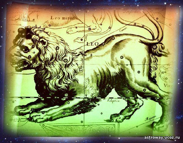 знаменитости под знаком лев